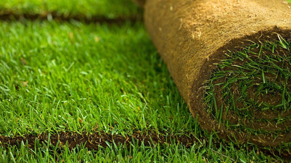 Рулонные травяные покрытия