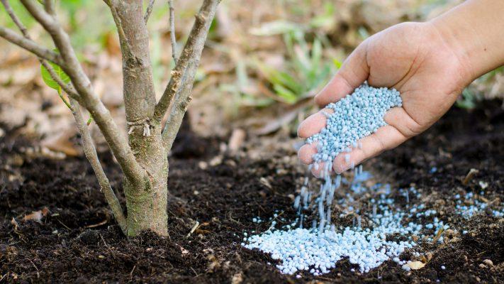 Удобрение земли